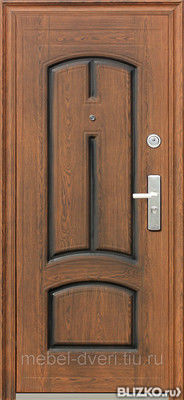 входные двери в городе павловский посад